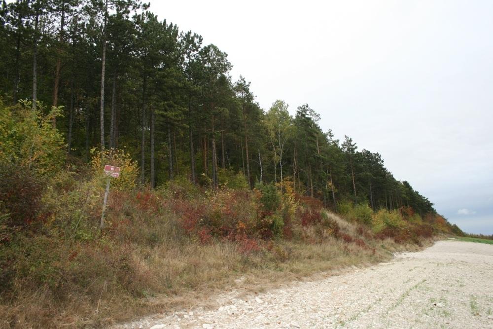 Rezerwat Opalonki